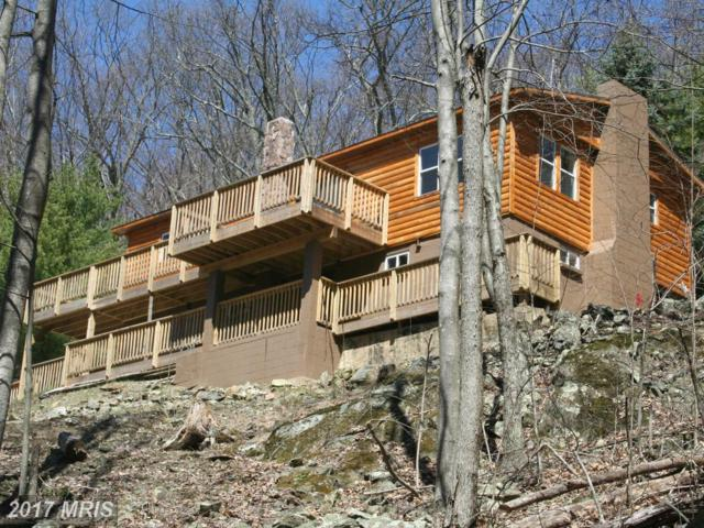 394 Petes Place, Stanley, VA 22851 (#PA9936233) :: Pearson Smith Realty