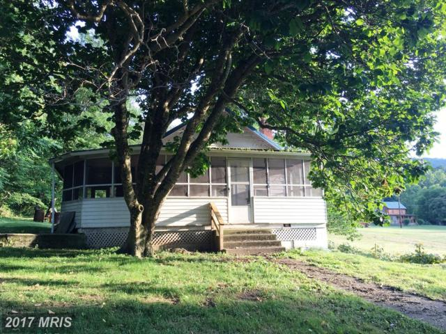 3702 Pine Grove Road, Stanley, VA 22851 (#PA9994752) :: Pearson Smith Realty