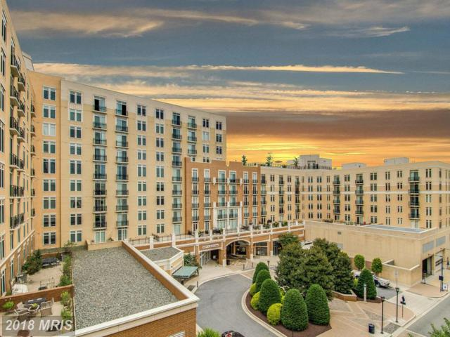 155 Potomac Passage #805, Oxon Hill, MD 20745 (#PG10031824) :: Pearson Smith Realty