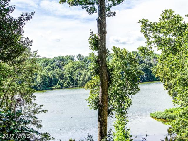 1310 Swan Harbour Road, Fort Washington, MD 20744 (#PG10043754) :: Pearson Smith Realty