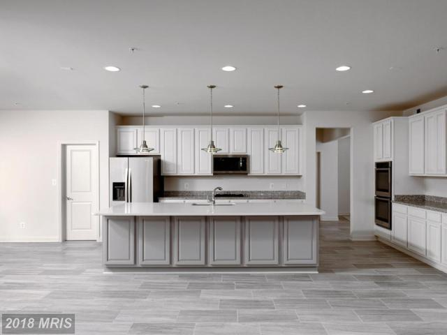 12701 Carolina Meadow Lane, Clinton, MD 20735 (#PG10047409) :: Browning Homes Group