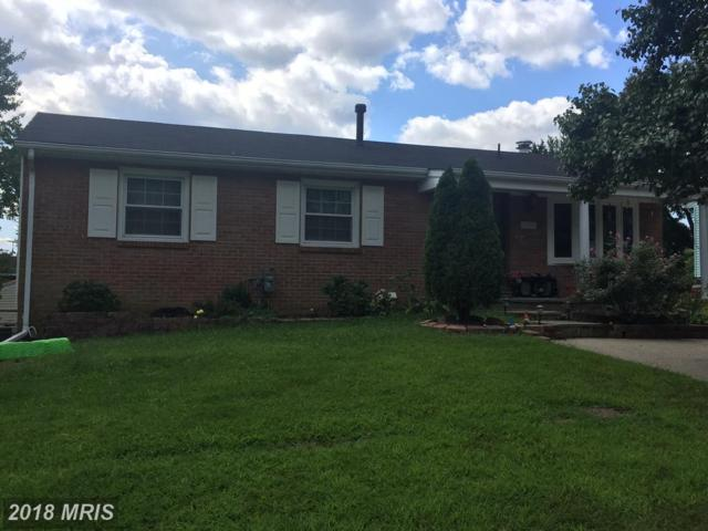 13129 Wellford Drive, Beltsville, MD 20705 (#PG10052182) :: Pearson Smith Realty