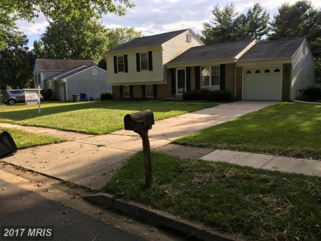 2802 Alex Court, Bowie, MD 20716 (#PG10058462) :: Pearson Smith Realty