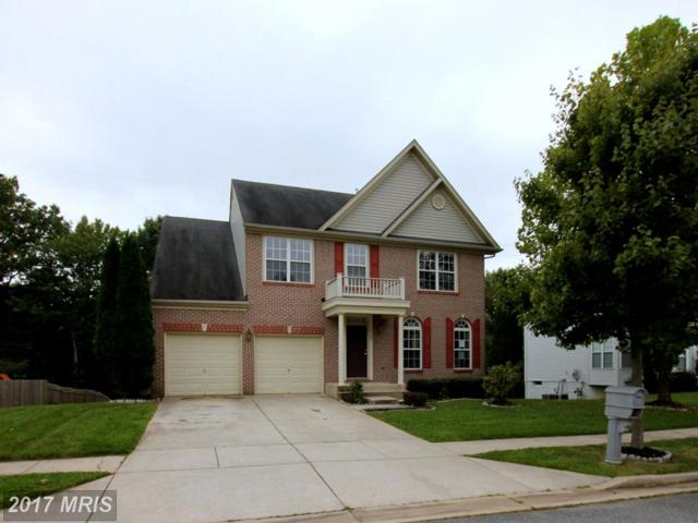 7705 Loughborough Place, Beltsville, MD 20705 (#PG10058760) :: Pearson Smith Realty