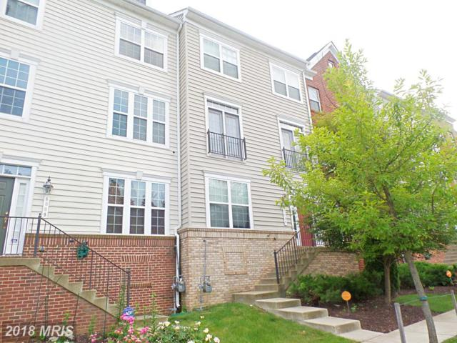 8007 Sport View Road, Landover, MD 20785 (#PG10059101) :: Pearson Smith Realty