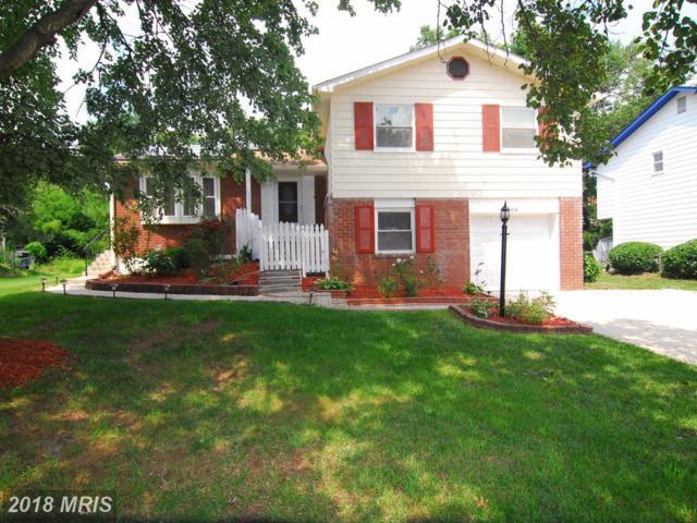 8506 Montpelier Drive, Laurel, MD 20708 (#PG10067183) :: SURE Sales Group