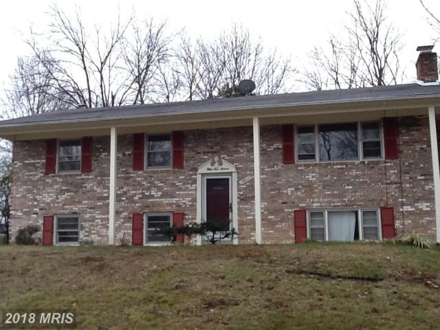 5911 Terence Drive, Clinton, MD 20735 (#PG10076398) :: Bob Lucido Team of Keller Williams Integrity