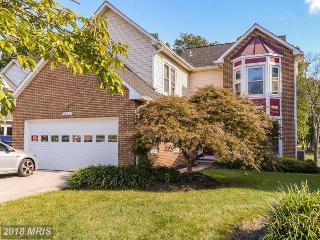 14213 Greenview Drive, Laurel, MD 20708 (#PG10077119) :: Pearson Smith Realty