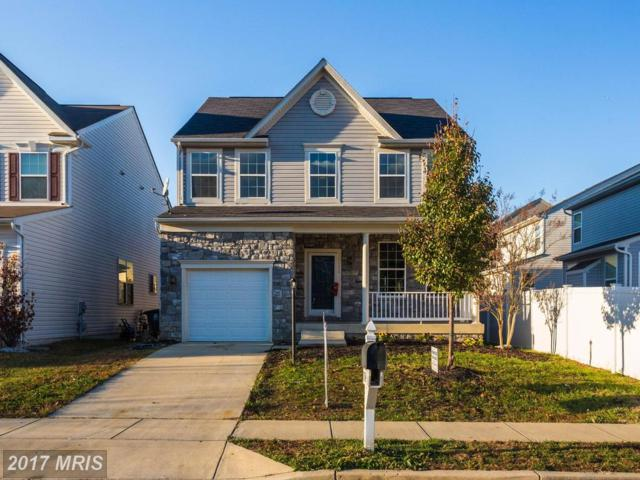 7134 Britens Way, Brandywine, MD 20613 (#PG10078483) :: Pearson Smith Realty