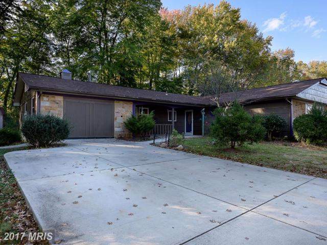 16204 Audubon Lane, Bowie, MD 20716 (#PG10084540) :: Pearson Smith Realty