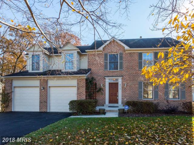 3715 Green Ash Court, Beltsville, MD 20705 (#PG10100091) :: Pearson Smith Realty
