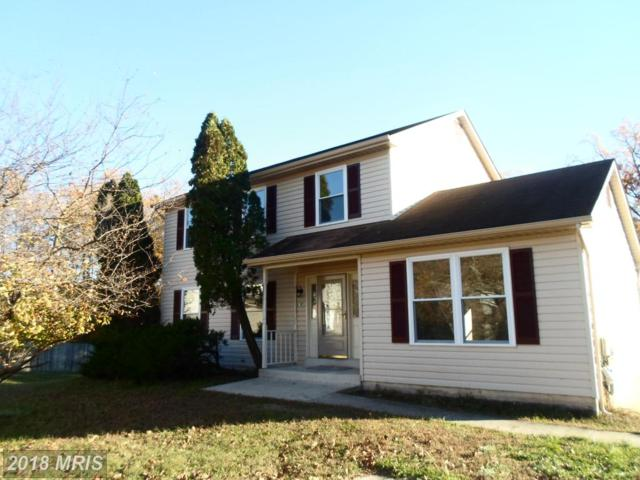 4205 Wandering Court, Temple Hills, MD 20748 (#PG10101612) :: Pearson Smith Realty