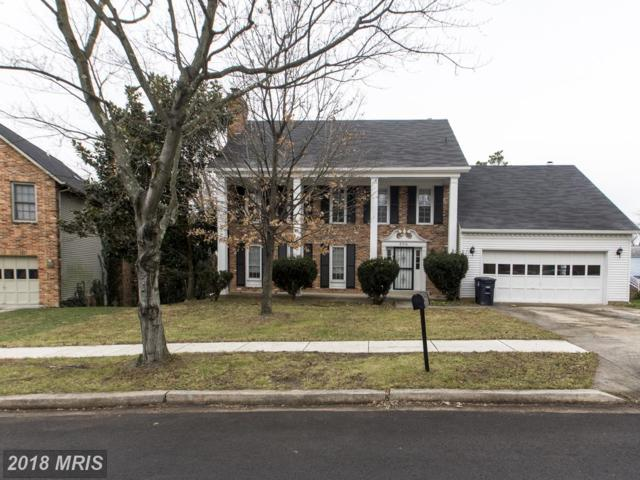 8310 Osage Terrace, Adelphi, MD 20783 (#PG10119015) :: The Gus Anthony Team