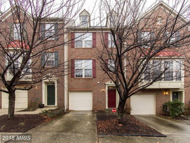9503 Tulip Tree Drive, Bowie, MD 20721 (#PG10123138) :: Pearson Smith Realty