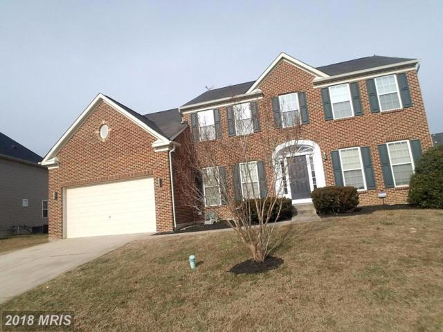 1404 River Birch Place, Accokeek, MD 20607 (#PG10124050) :: Pearson Smith Realty