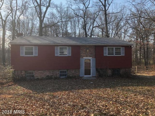 2014 Spring Grove Drive, Accokeek, MD 20607 (#PG10124464) :: Pearson Smith Realty