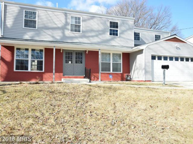4215 Blacksnake Drive, Temple Hills, MD 20748 (#PG10143338) :: The Gus Anthony Team