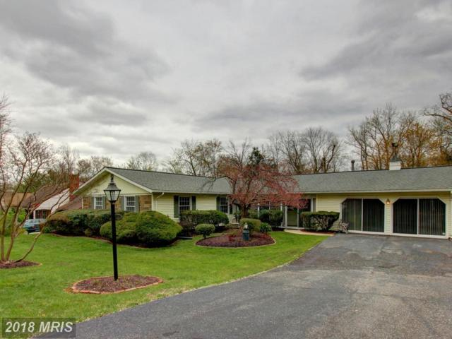 12219 Shadetree Lane, Laurel, MD 20708 (#PG10212656) :: The Gus Anthony Team