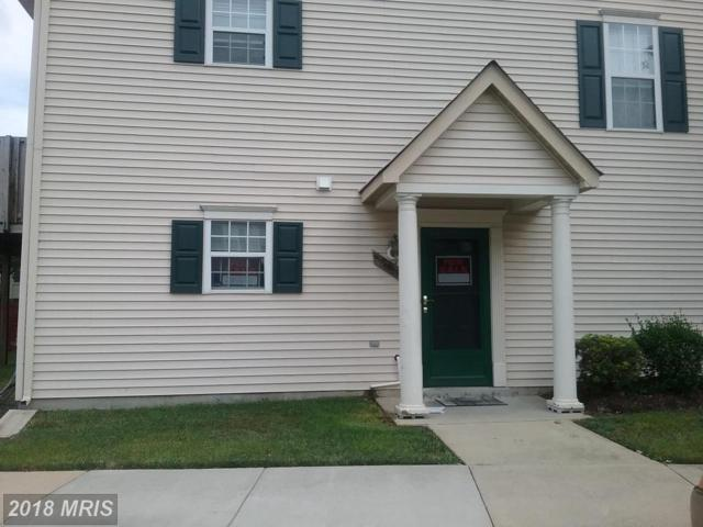 3723 Wilkinson Drive #501, Suitland, MD 20746 (#PG10303083) :: SURE Sales Group