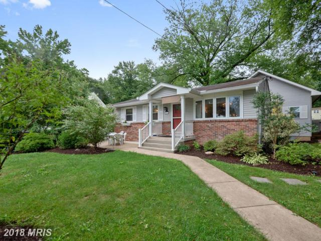 8503 Cunningham Drive, Berwyn Heights, MD 20740 (#PG9012781) :: Bob Lucido Team of Keller Williams Integrity