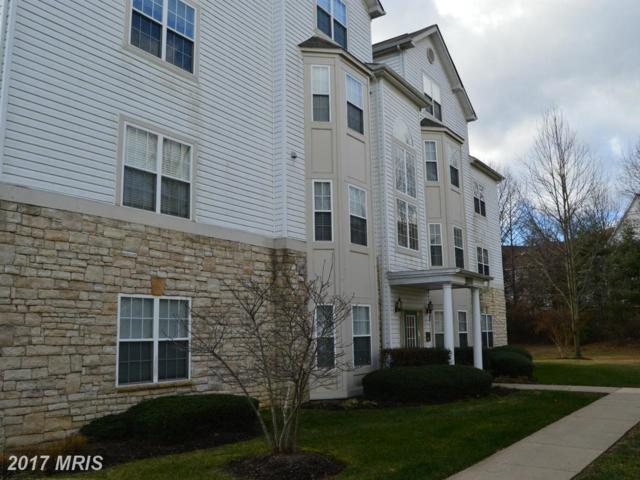 15608 Everglade Lane D204, Bowie, MD 20716 (#PG9833964) :: Pearson Smith Realty