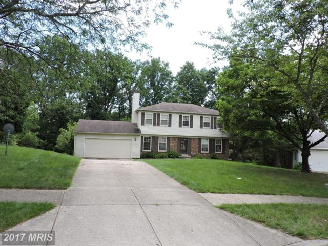 10919 Maiden Drive, Bowie, MD 20720 (#PG9960476) :: LoCoMusings
