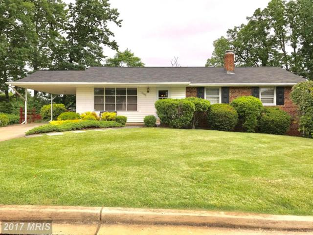 13104 Taney Drive, Beltsville, MD 20705 (#PG9961549) :: Pearson Smith Realty