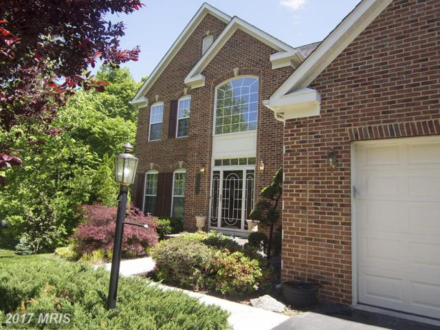 7008 Brentwood Drive, Upper Marlboro, MD 20772 (#PG9966479) :: Pearson Smith Realty