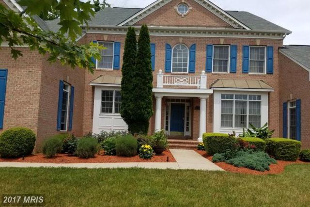 12708 Willow Marsh Lane, Bowie, MD 20720 (#PG9975666) :: LoCoMusings