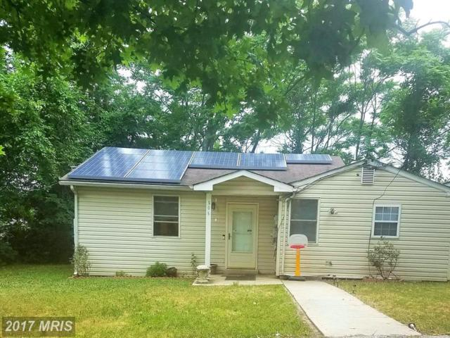 806 Balsamtree Place, Capitol Heights, MD 20743 (#PG9980715) :: Pearson Smith Realty
