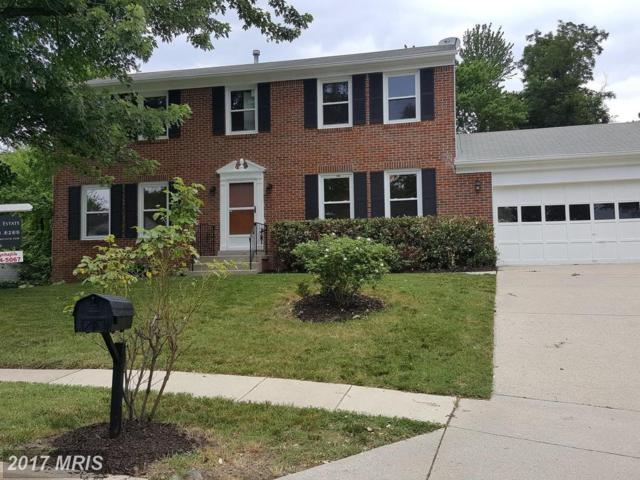 11405 Westview Court, Beltsville, MD 20705 (#PG9983917) :: A-K Real Estate