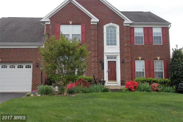 12215 Torrey Pines Terrace, Beltsville, MD 20705 (#PG9987327) :: Colgan Real Estate