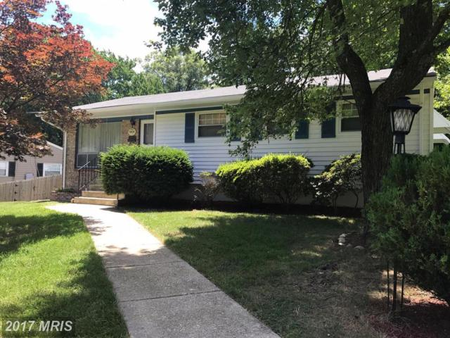10436 Edgefield Drive, Adelphi, MD 20783 (#PG9988174) :: Pearson Smith Realty