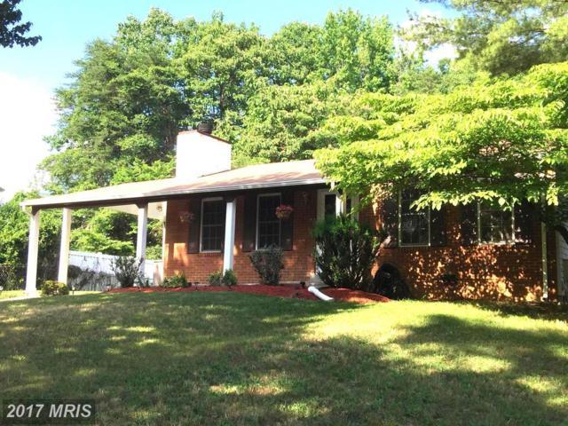 8702 Cushman Drive, Clinton, MD 20735 (#PG9990703) :: Pearson Smith Realty