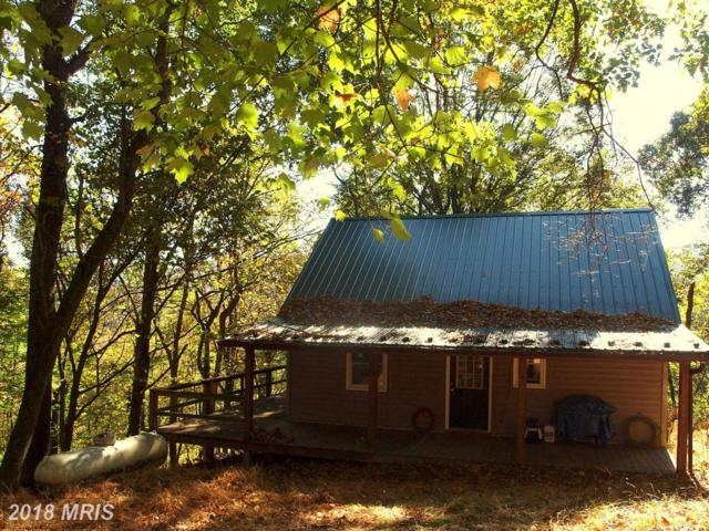 1378 Loop Road, Franklin, WV 26807 (#PT10088093) :: The Bob & Ronna Group