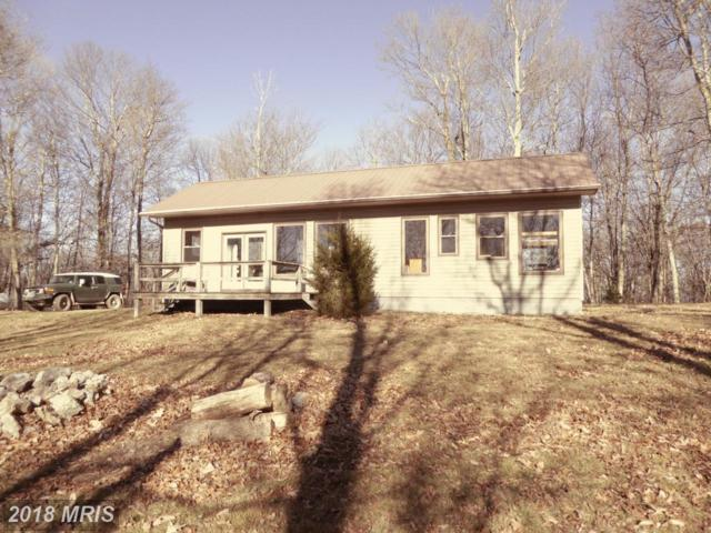 656 Turkey Ridge Road, Franklin, WV 26807 (#PT10273489) :: The Bob & Ronna Group