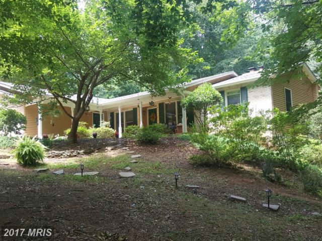 12525 Basswood Drive, Manassas, VA 20112 (#PW10006044) :: LoCoMusings