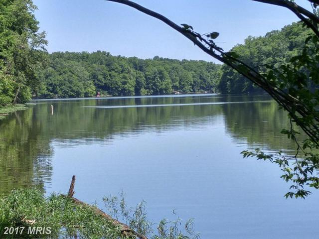 5981 Twin Rivers Drive, Manassas, VA 20112 (#PW10010009) :: Pearson Smith Realty