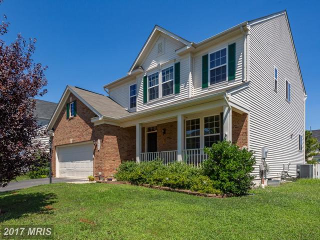 14258 Ladderbacked Drive, Gainesville, VA 20155 (#PW10014063) :: Pearson Smith Realty
