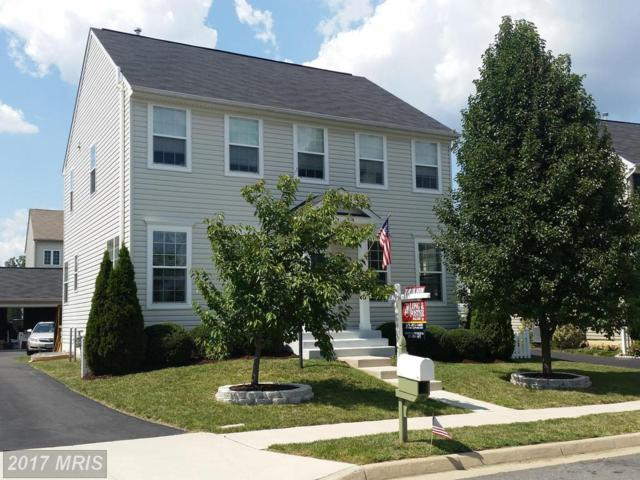 14338 Broadwinged Drive, Gainesville, VA 20155 (#PW10018484) :: Pearson Smith Realty