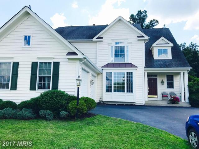 12733 Victory Lakes Loop, Bristow, VA 20136 (#PW10020461) :: Pearson Smith Realty