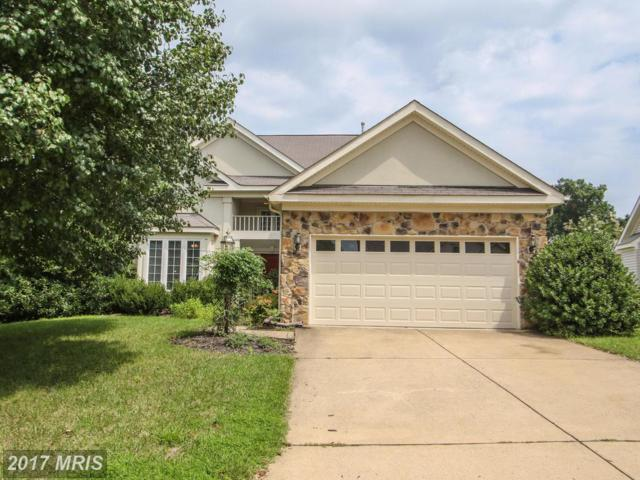 13700 Paddock Court, Gainesville, VA 20155 (#PW10032148) :: Pearson Smith Realty