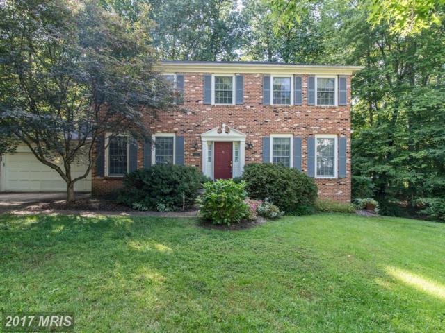 13482 Natick Drive, Manassas, VA 20112 (#PW10046217) :: Jacobs & Co. Real Estate