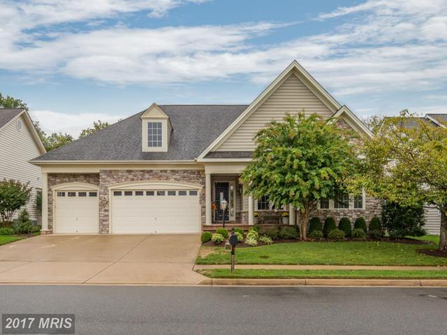 13480 Brightview Way, Gainesville, VA 20155 (#PW10049960) :: Pearson Smith Realty