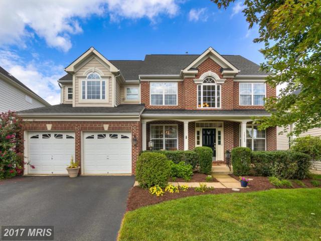 14569 Jansbury Street, Gainesville, VA 20155 (#PW10052454) :: The Hagarty Real Estate Team