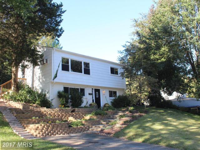 3202 Burbank Lane, Woodbridge, VA 22193 (#PW10059449) :: Pearson Smith Realty
