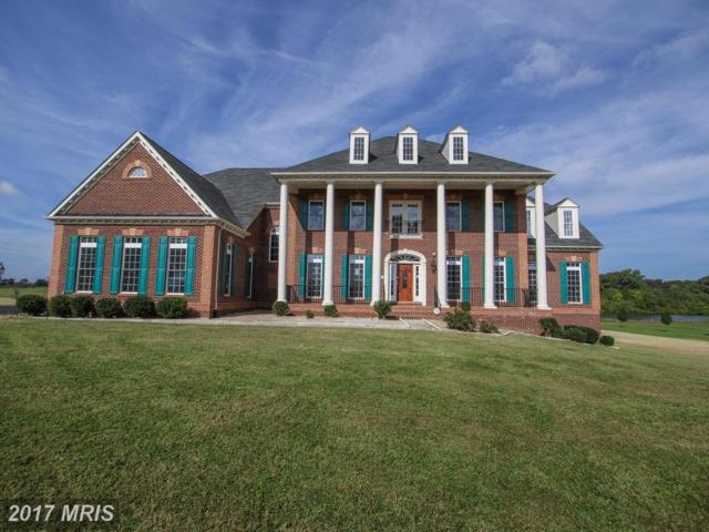 14330 Trotters Ridge Place, Nokesville, VA 20181 (#PW10064461) :: Pearson Smith Realty