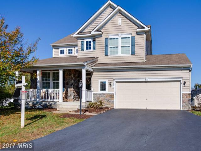 14217 Ladderbacked Drive, Gainesville, VA 20155 (#PW10085936) :: Pearson Smith Realty