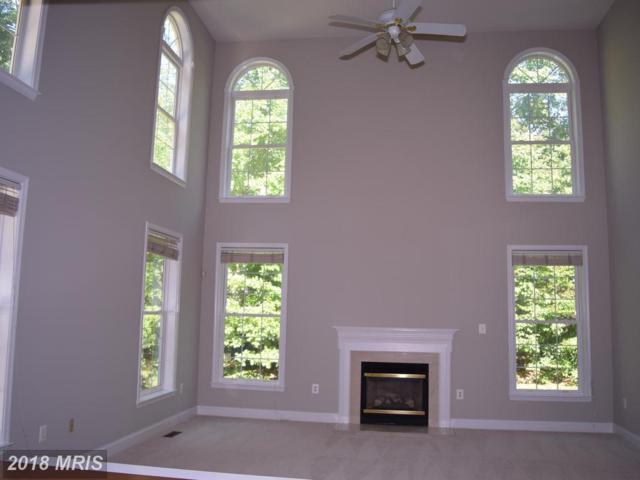 13993 Flagtree Place, Manassas, VA 20112 (#PW10100710) :: Pearson Smith Realty