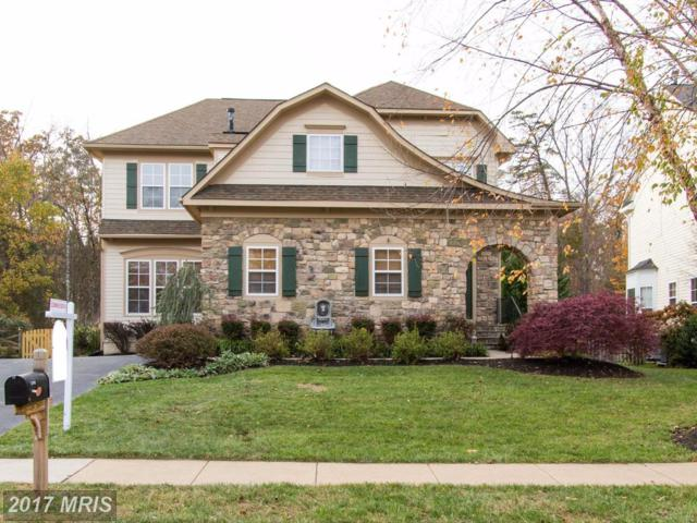 12768 Victory Lakes Loop, Bristow, VA 20136 (#PW10101693) :: The Putnam Group